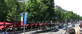 avenue-des-champs-elysees-post-image